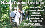 Mayong Tracking Experience